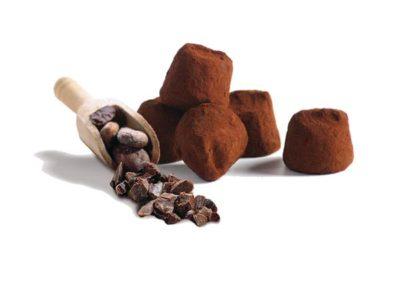 Eclats-de-fèves-de-cacao.truffes02-600x600 cocoa bean chips
